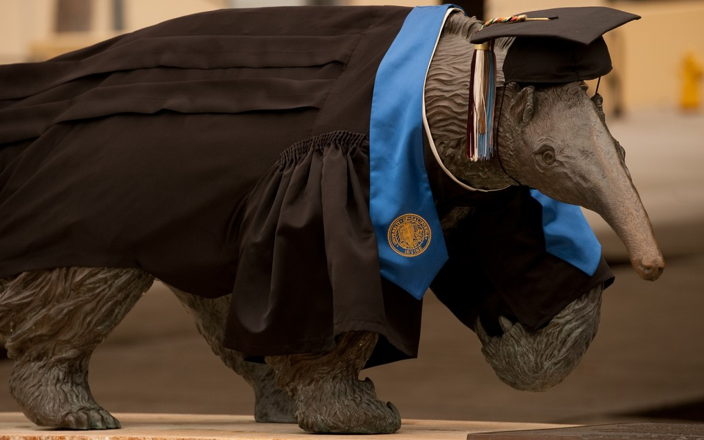 Graduating Anteater with gown and cap