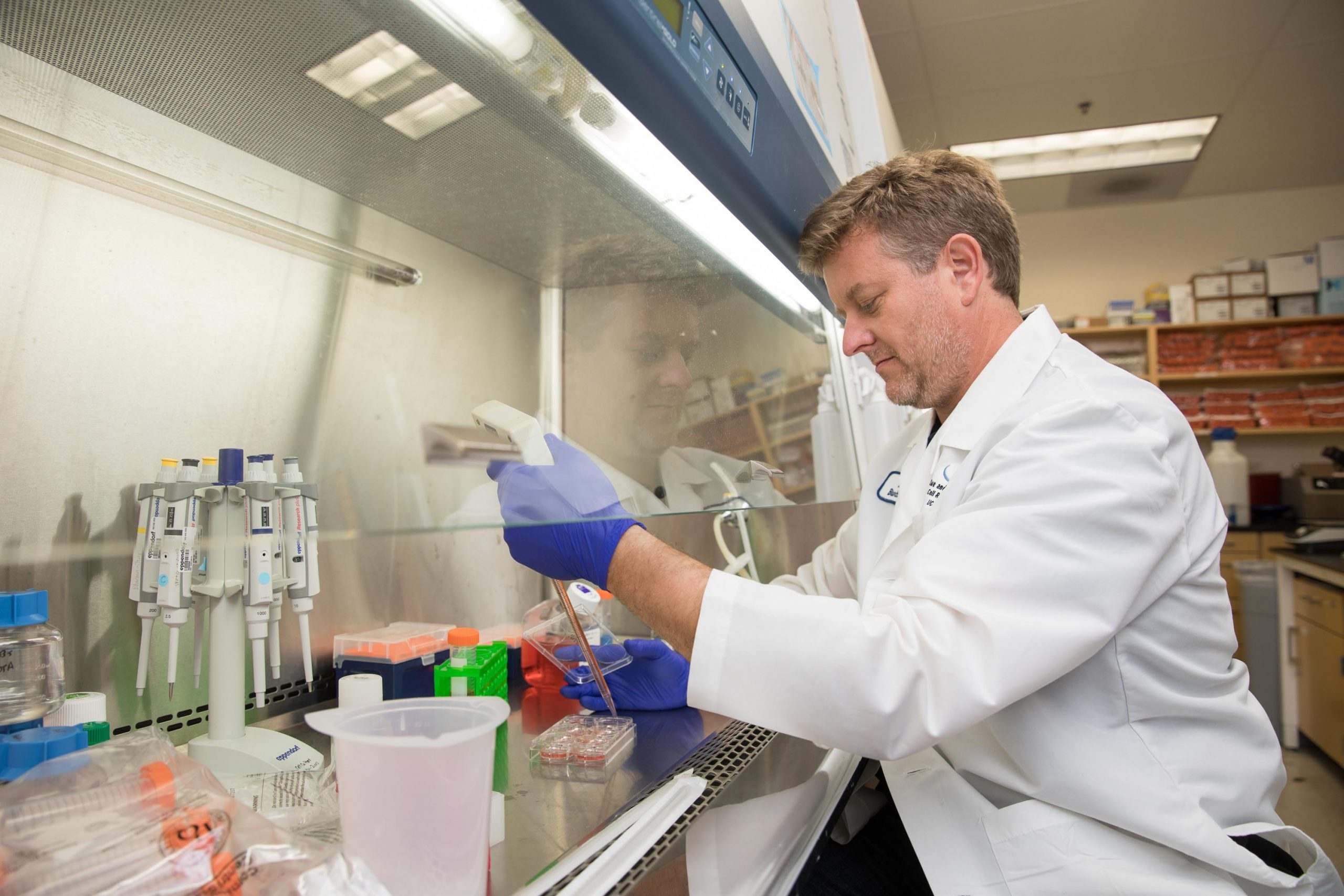 Blurton Jones in lab