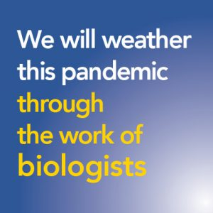 We will weather this pandemic IMG