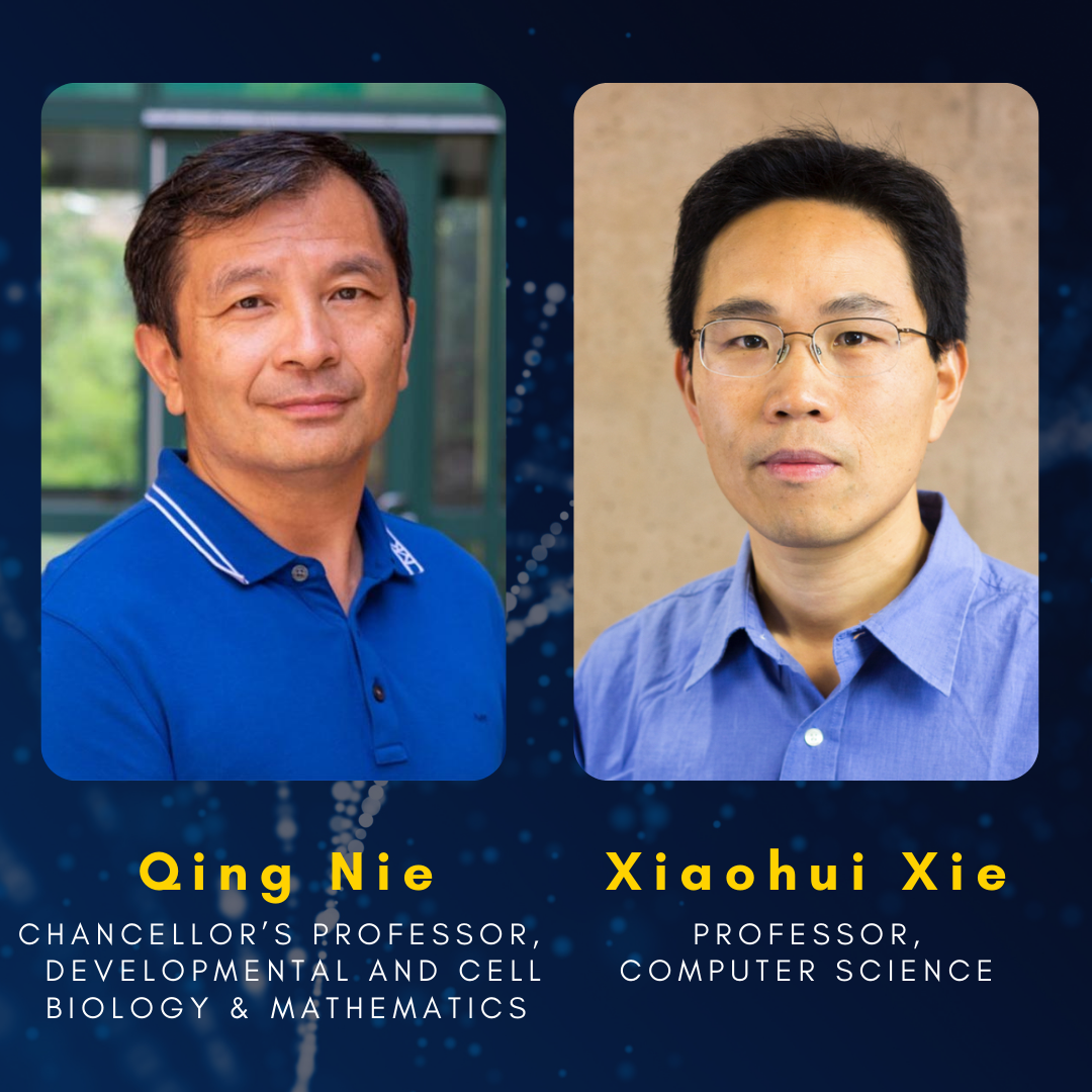 Headshot of professor Qing Nie: Chancellor's professor, developmental and cell biology and mathematics, next to headshot of Professor Xiaohui Xie: Professor of computer science