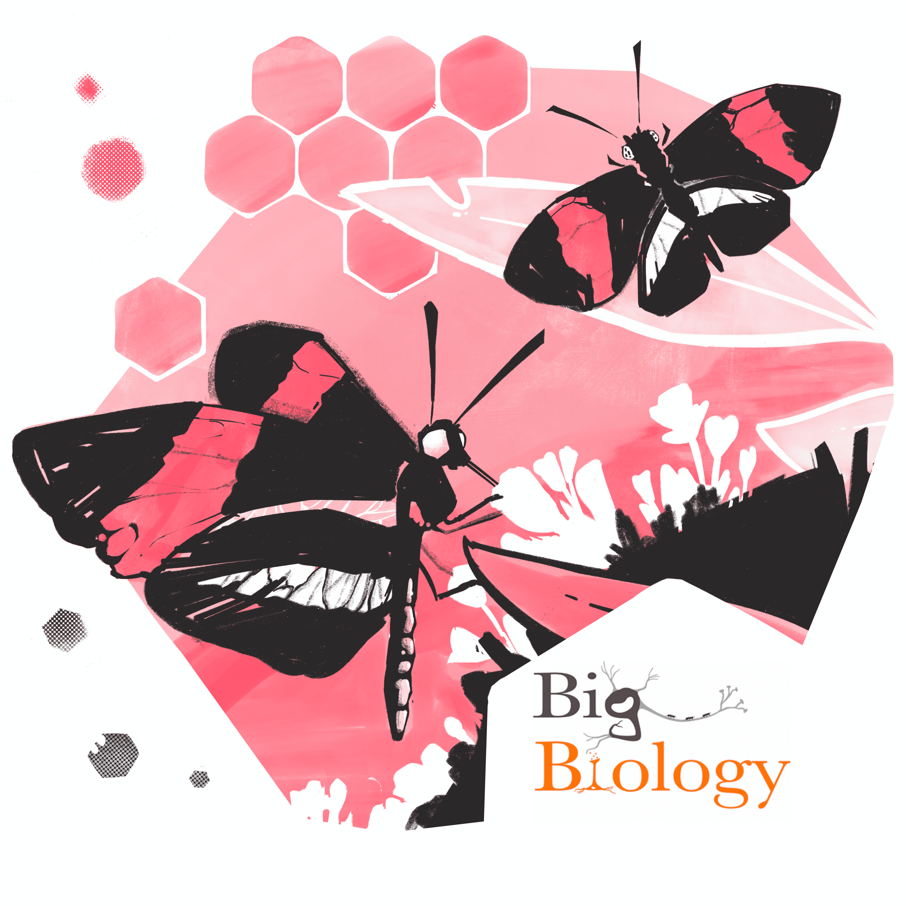 Pink Butterfly near Flower with caption: Big Biology