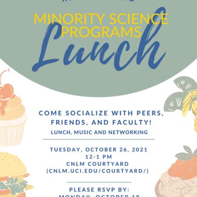 MSP lunch flyer